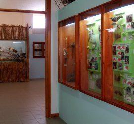 museo slideshow
